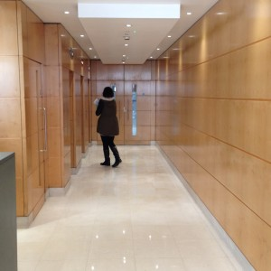 Lift lobby wooden veneer panels before spraying works by Ceilcote